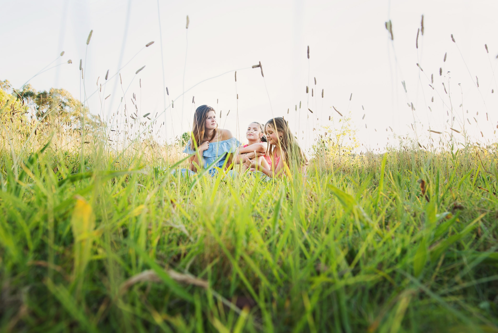 Three girls sitting in a field of long grass by Sydney photographer, Cindy Cavanagh