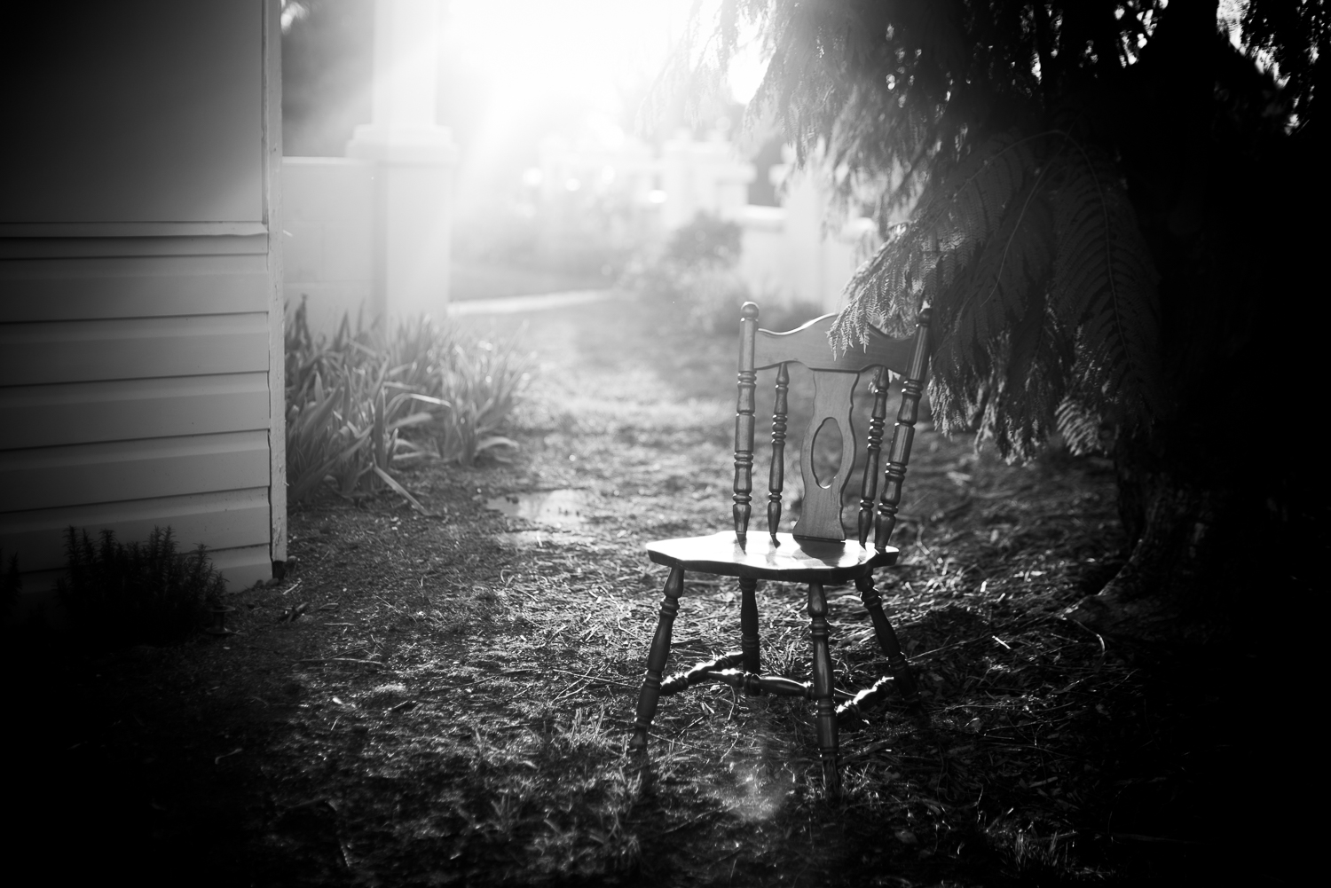 A wooden chair sits in the yard as the aftermoon light shines.