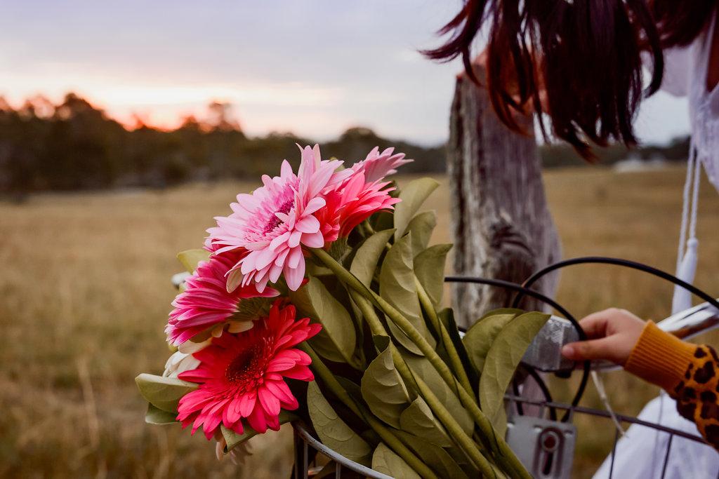 sydney-lifestyle-photography-cindycavanagh(40of43).jpg