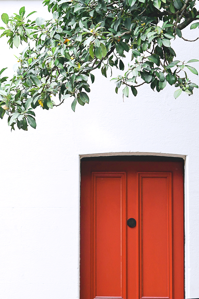 lifestyle-photography-sydney-red-door-and-white-wall