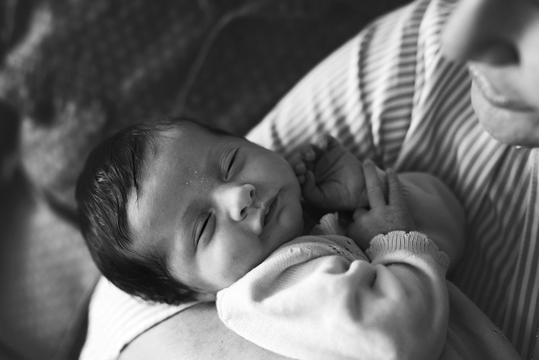 family_photogrpher_sydney-cindy-cavanagh-2384.jpg