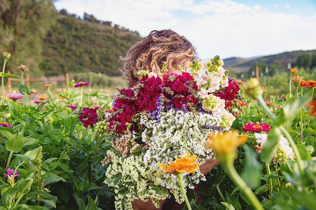 golden hour harvest 🧡🌈🌸 🌱#tworootsfarm #flowerlove #happyharvest #thosesnapsdoe📸: @ratherroamproductions