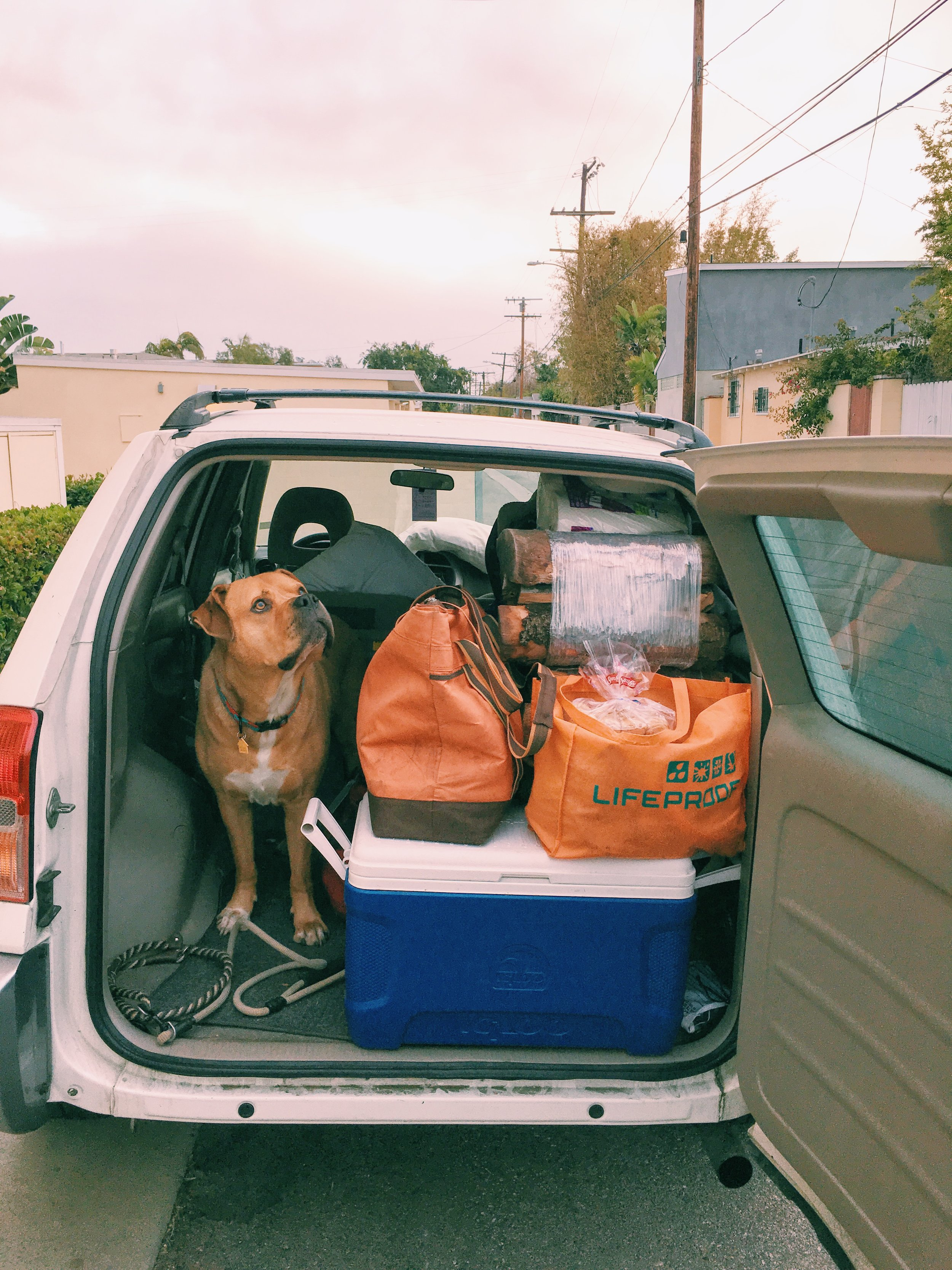 papi-packed-for-camping