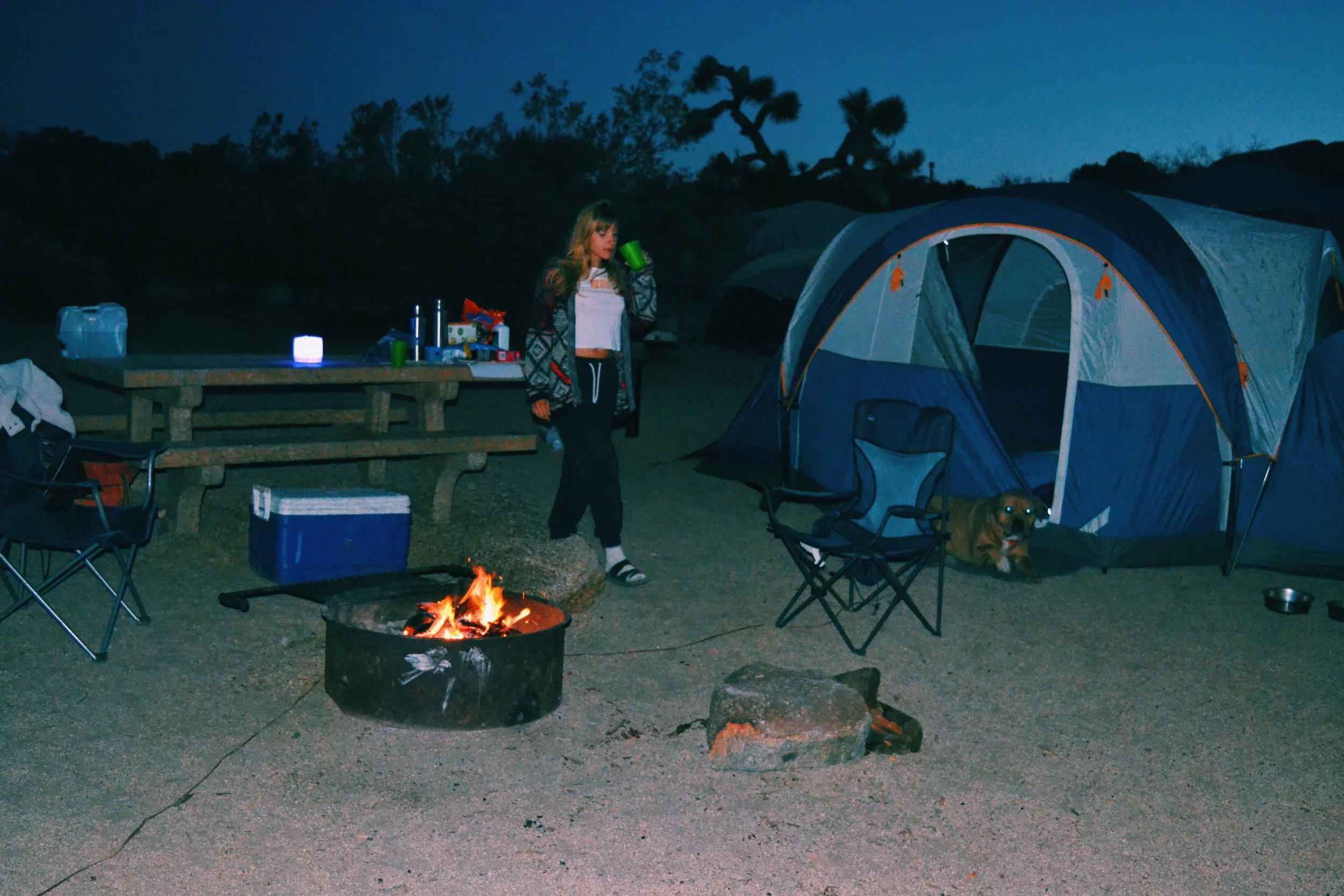 bonfire-campsite-joshua