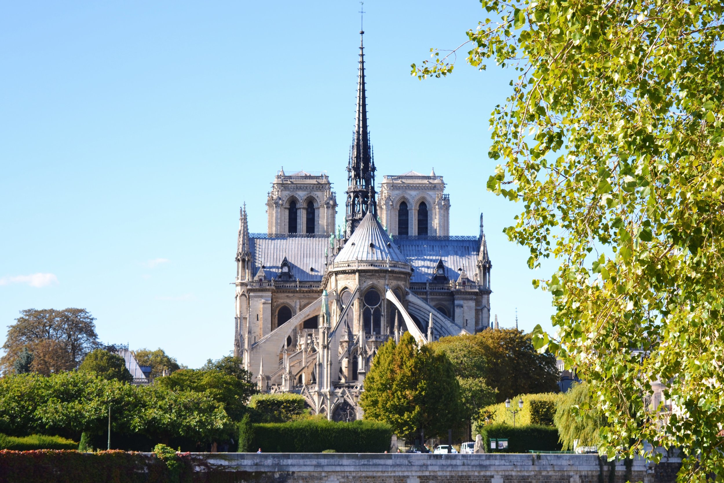 notre-dame-from-the-back