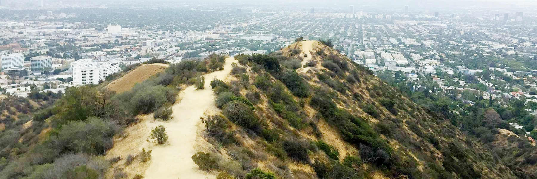runyon-canyon-hike-trails.jpg