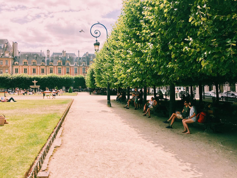 linden-trees-place-des-vosges-paris.JPG