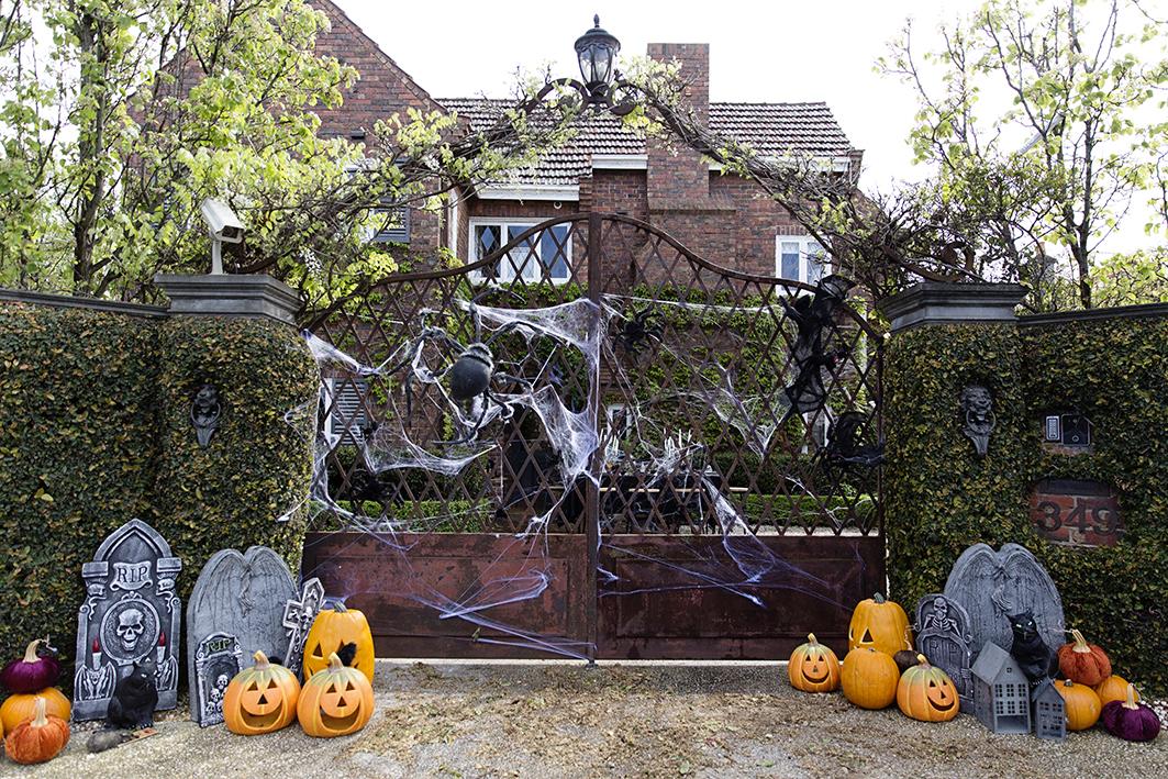 Halloween Decor 047 copy.jpg