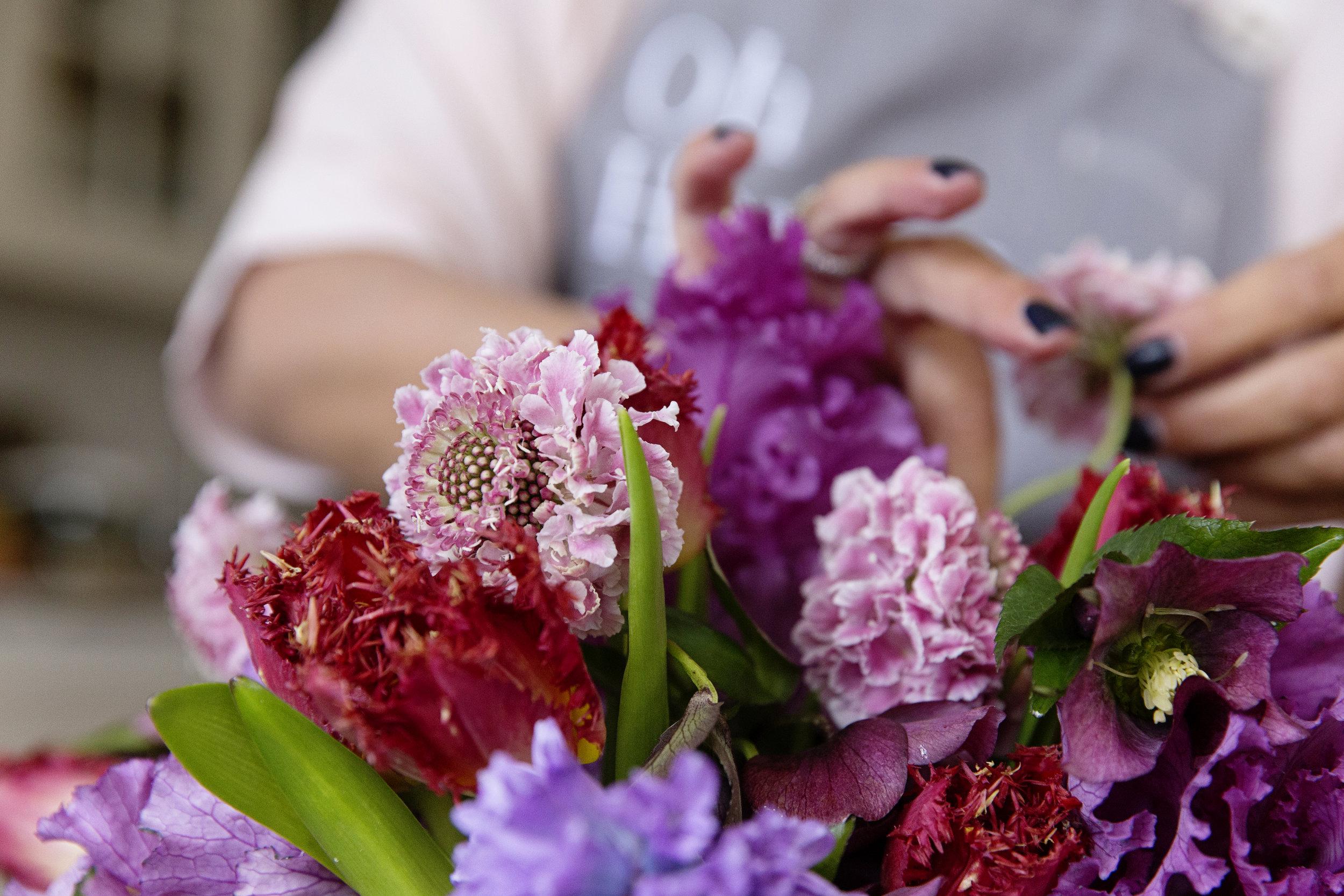 Spring Flowers 0017.JPG