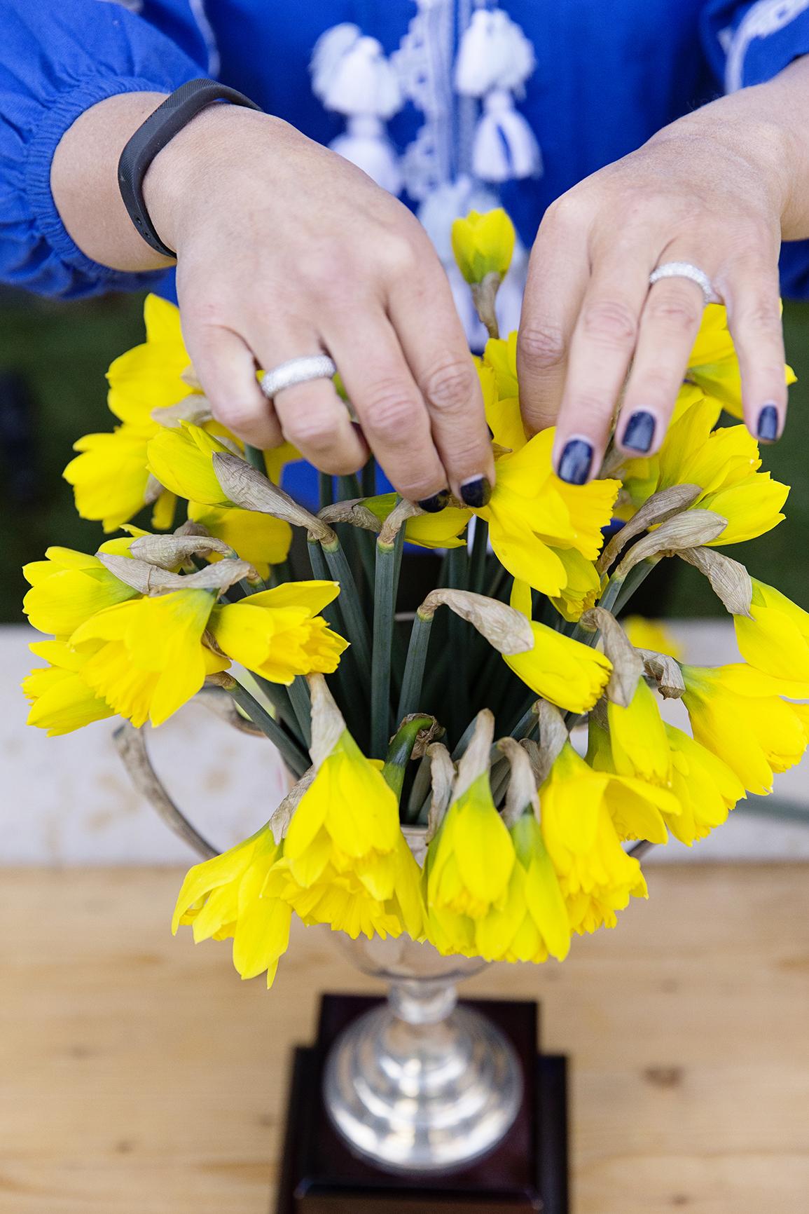 Daffodil Day 020.jpg