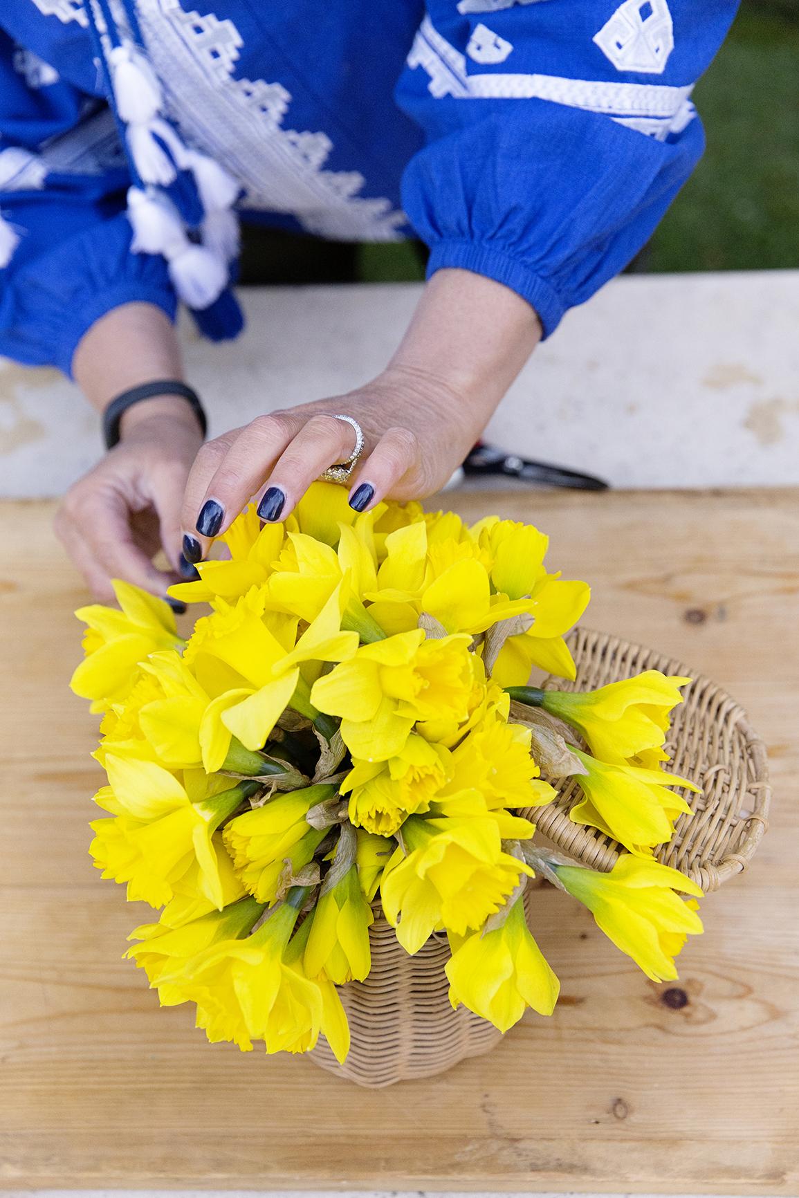 Daffodil Day 031.JPG
