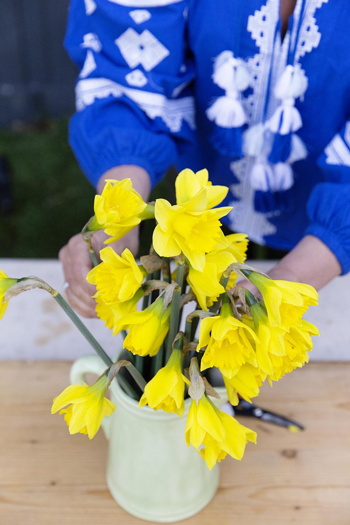 Daffodil Day 033.JPG