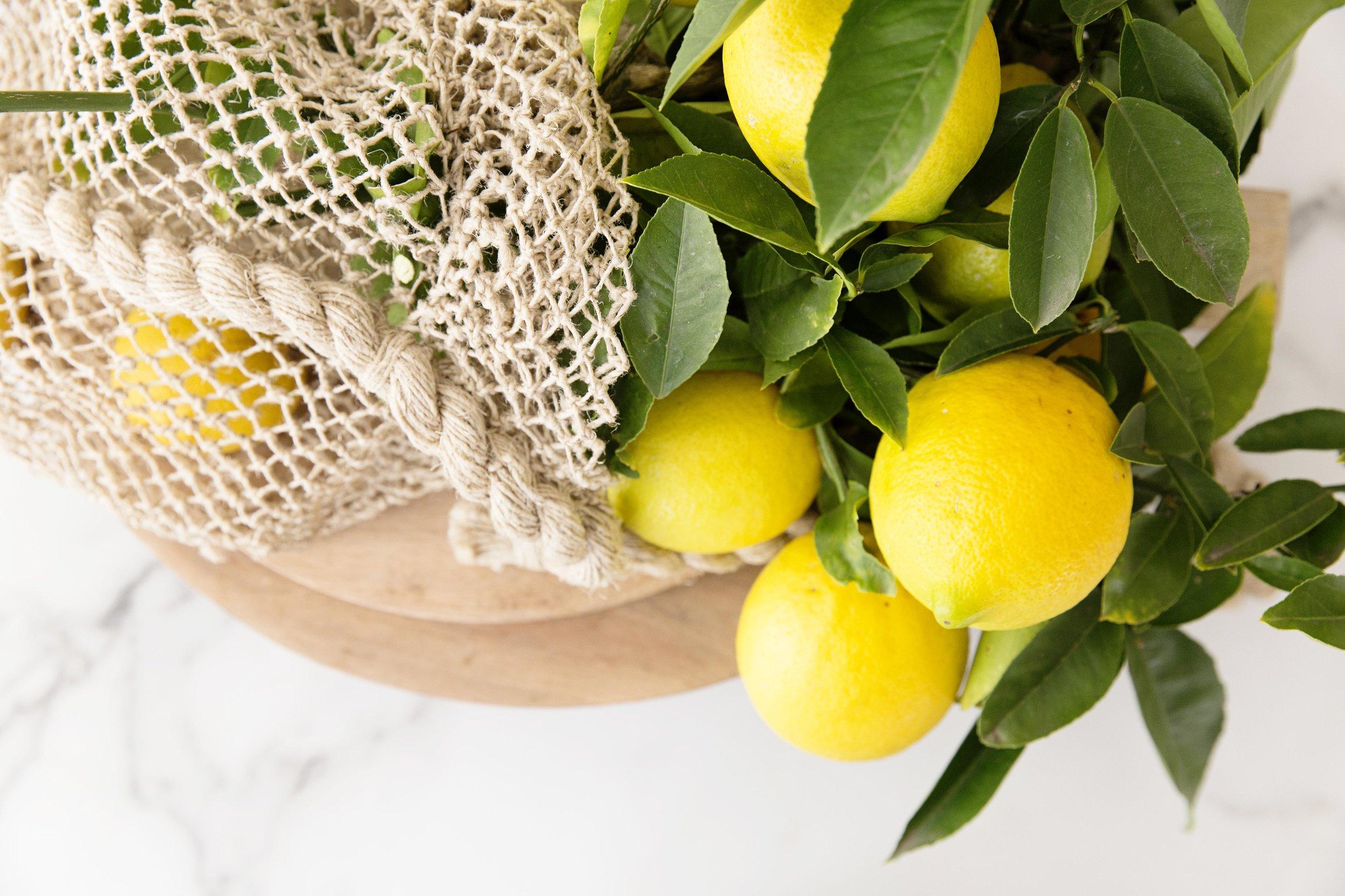 Lemon Bag 004.JPG