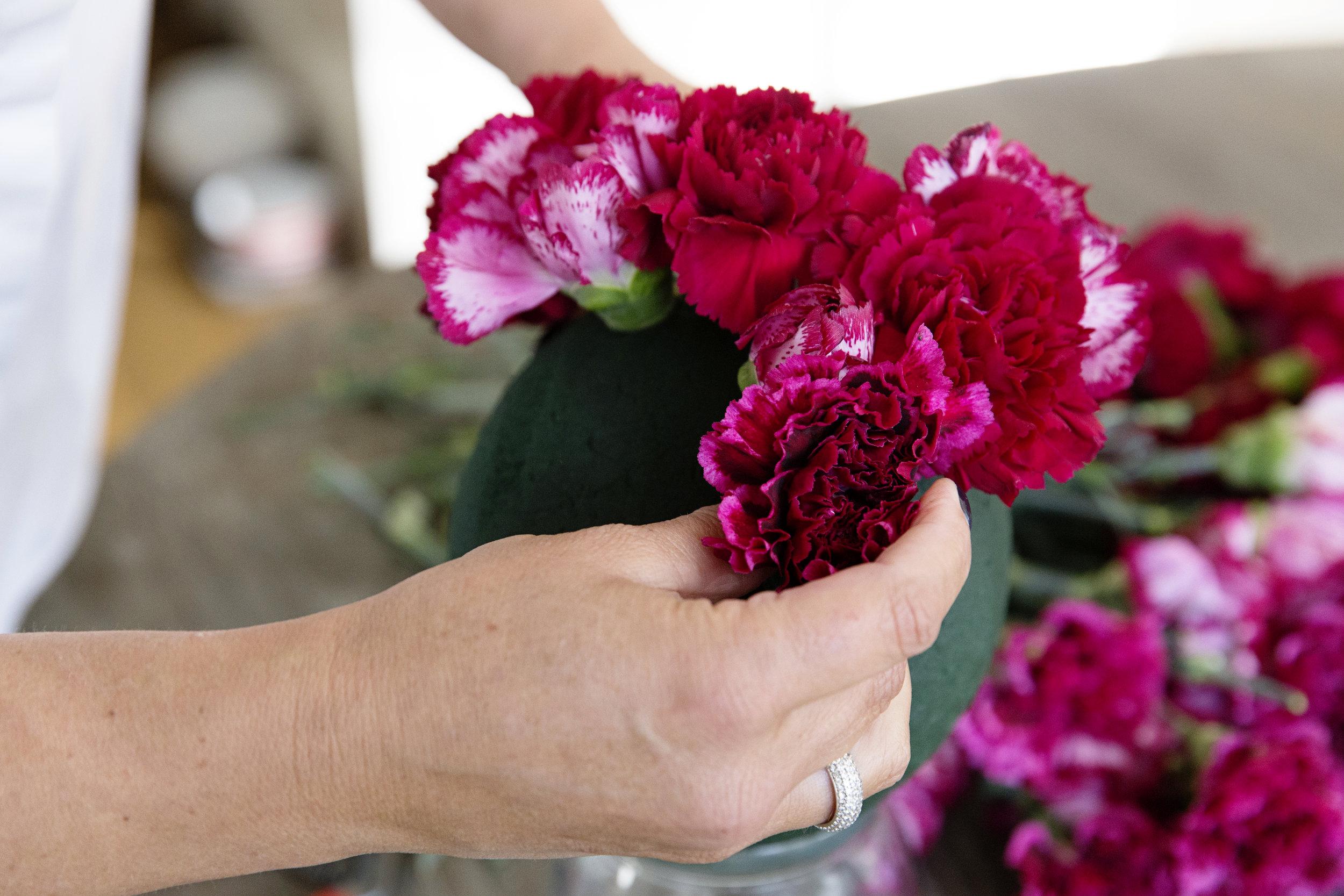 Carnation+Balls+0016.jpg