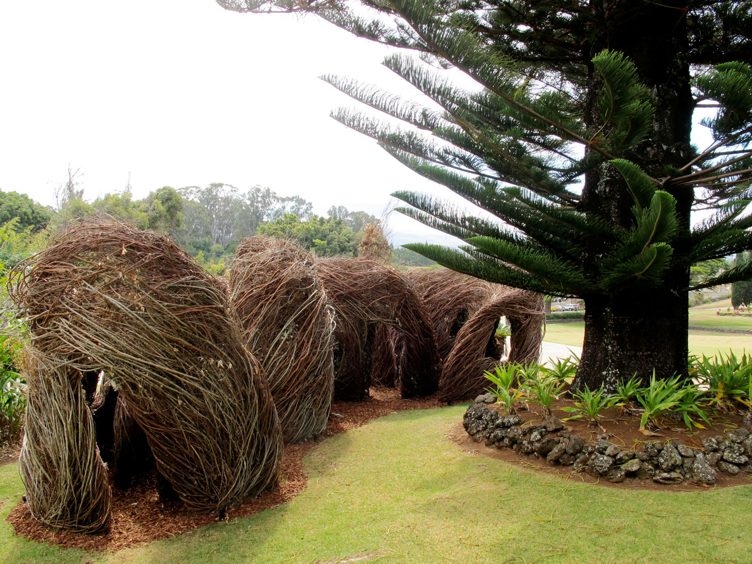 On the Wild Side by Patrick Dougherty