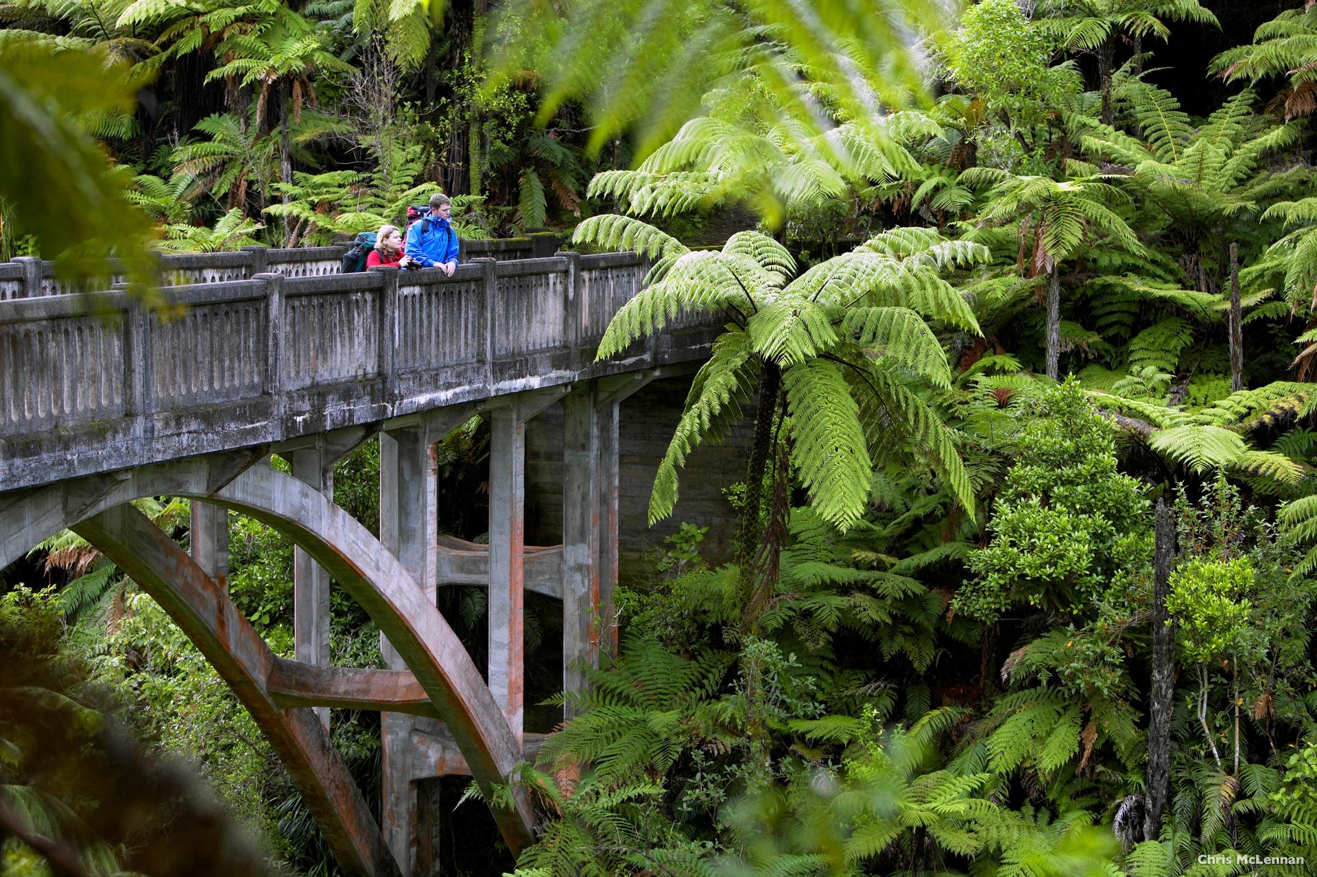 AT44-Whanganui-National-Park-Whanganui-Chris-McLennan.jpg