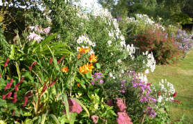 National Gardens Scheme - Over 100 private gardens large and small in Essex open on particular days for charity.click here for more information