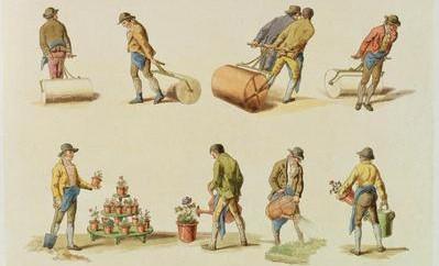 William Henry pyne gardeners vol 2