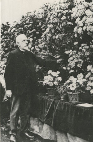 Joseph Pemberton at Rose stand national rose society