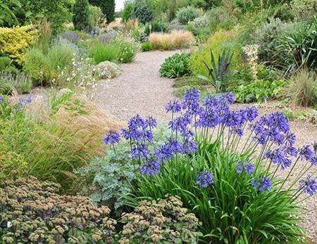 Gravel Garden, Beth Chatto