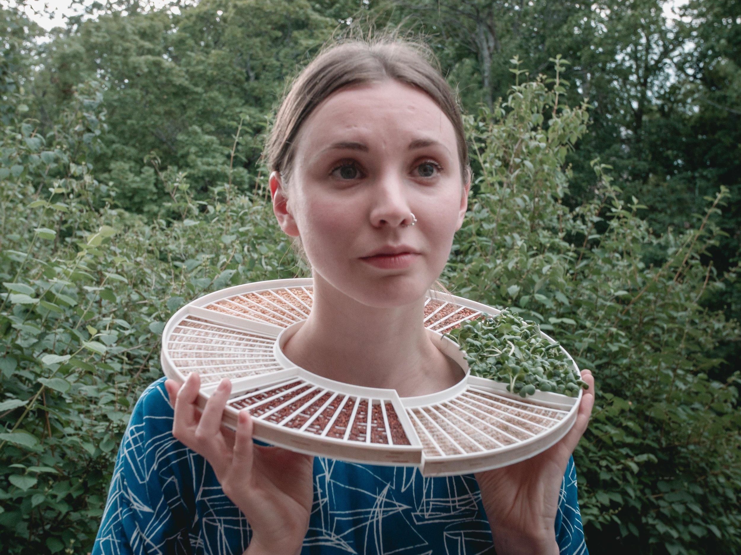 micro greens growing collar by Liisa   photo by Ivars Burtnieks