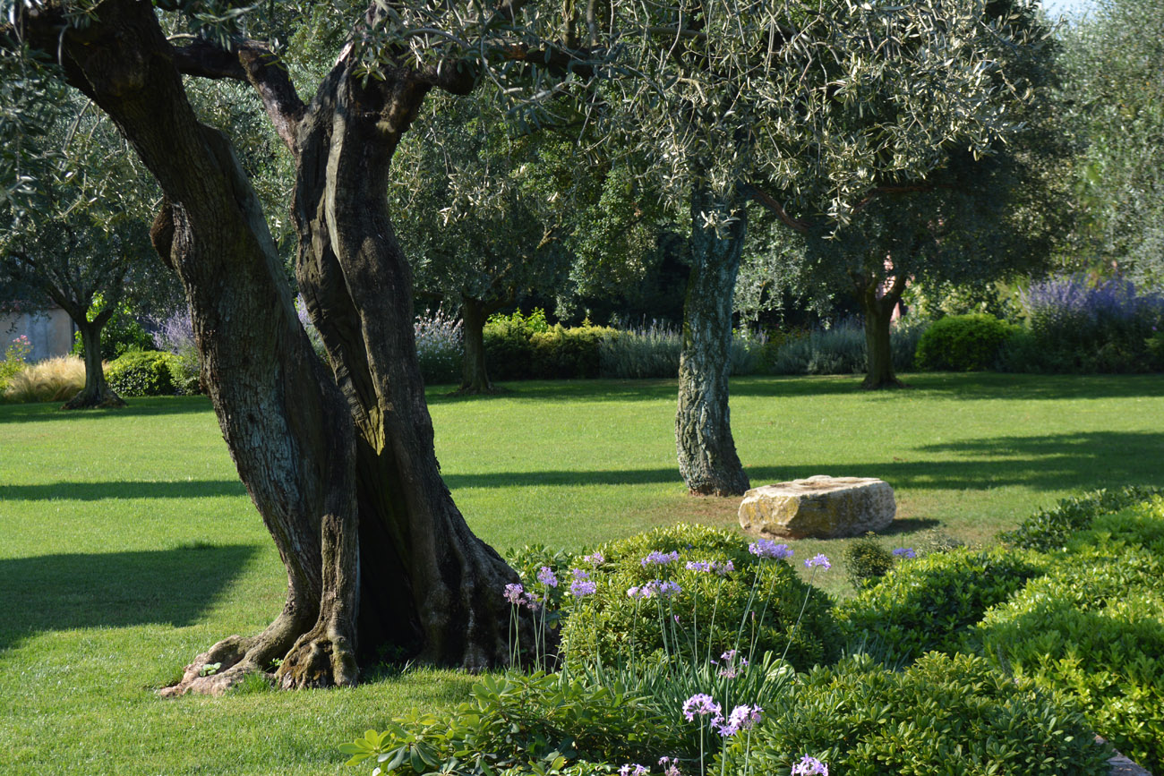 GreenAtelier   Architettura & Paesaggio    Portfolio >>