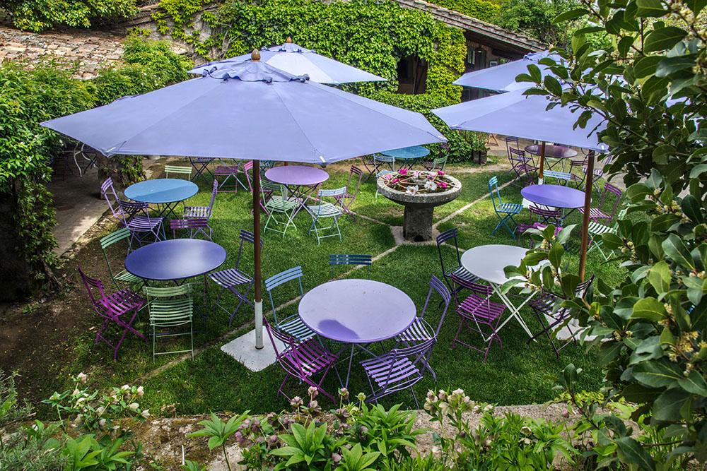 3-Centro-Botanico-Moutan-Vitorchiano-Peonie-in-fiore-Green-Atelier-News.jpg