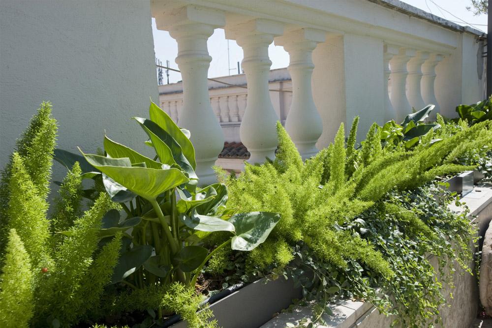 08-Terrazza-privata-Lungotevere-Roma-Studio-Architetti-dei-giardini-Green-Atelier-Roma.jpg