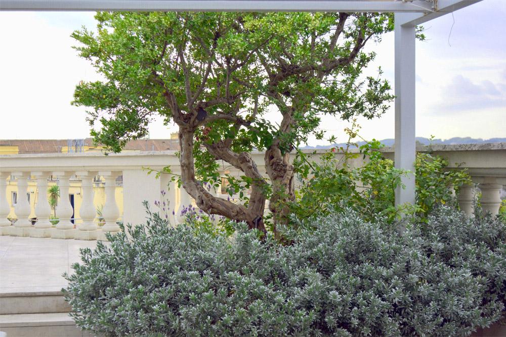 15-Terrazza-privata-Lungotevere-Roma-Studio-Architetti-dei-giardini-Green-Atelier-Roma.jpg