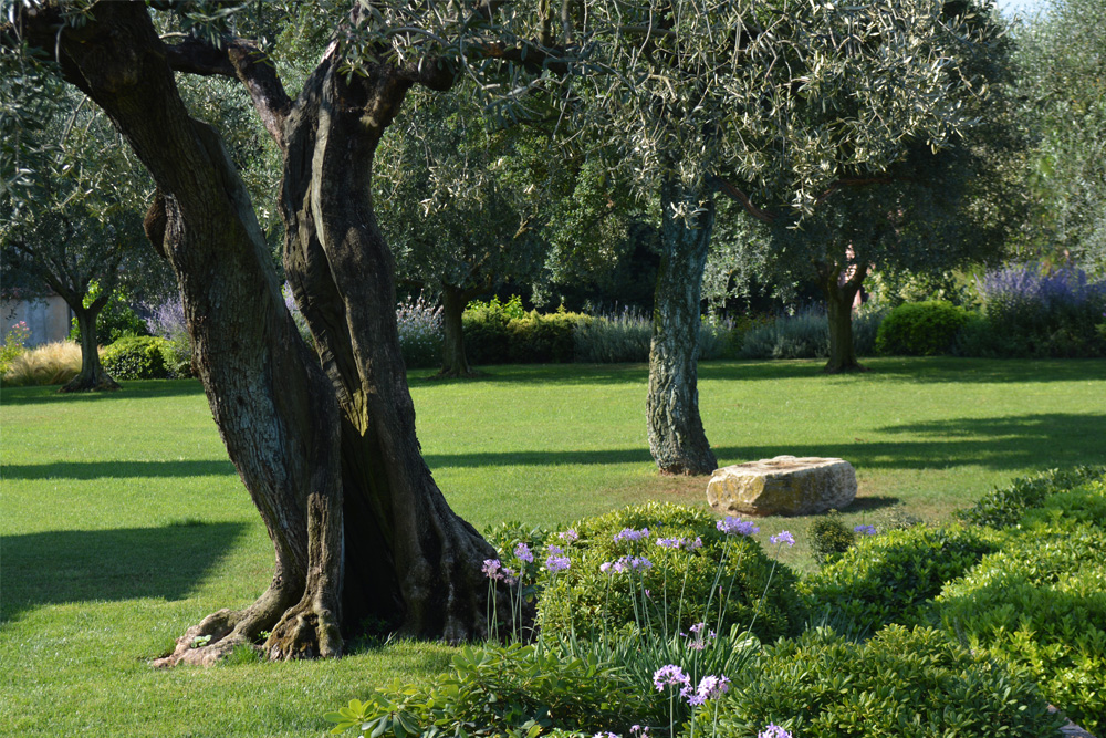06-Parco-privato-Roma-Studio-Architetto-del-paesaggio-Green-Atelier-Roma.jpg