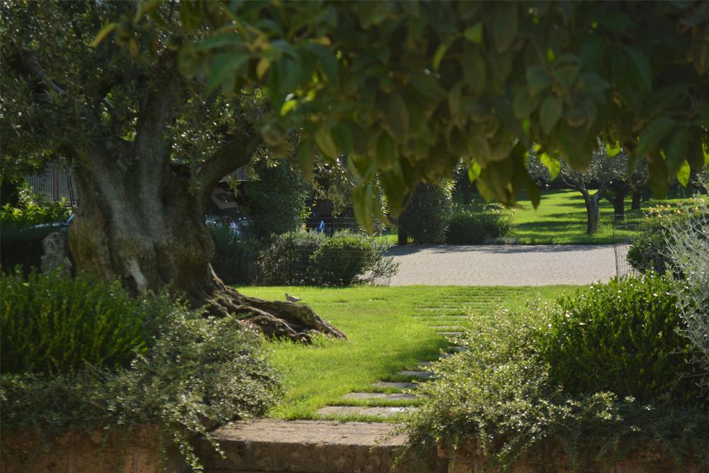 12-Parco-privato-Roma-Studio-Architetto-del-paesaggio-Green-Atelier-Roma.jpg