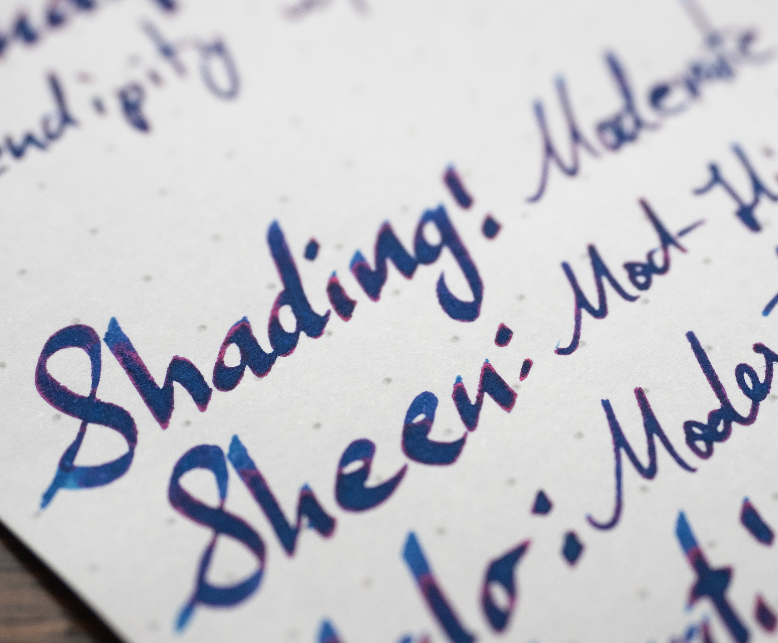 Copy of Sheen Rhodia