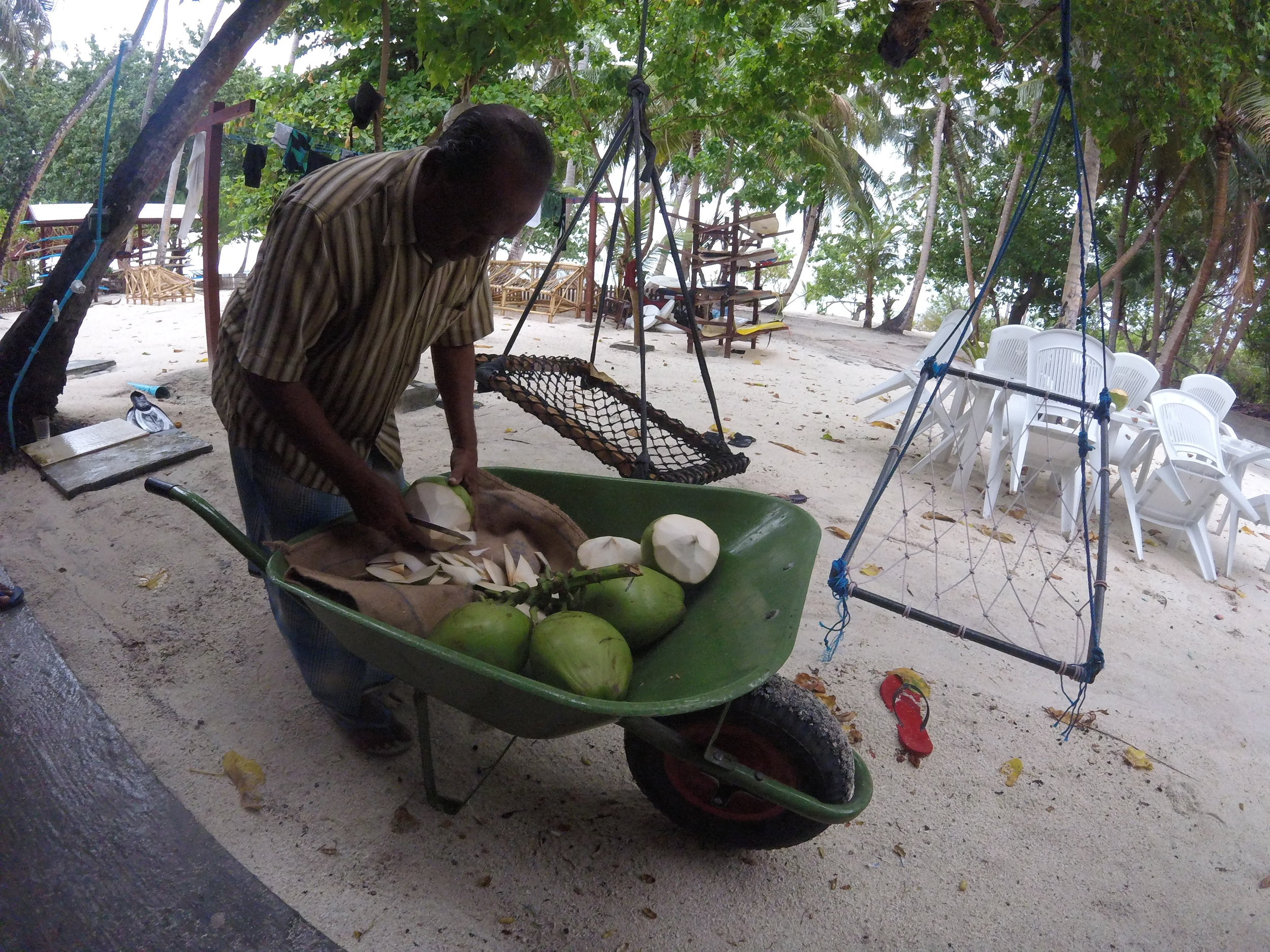 Yes there is a coconut man on the island going around to get you the real coconut water fix