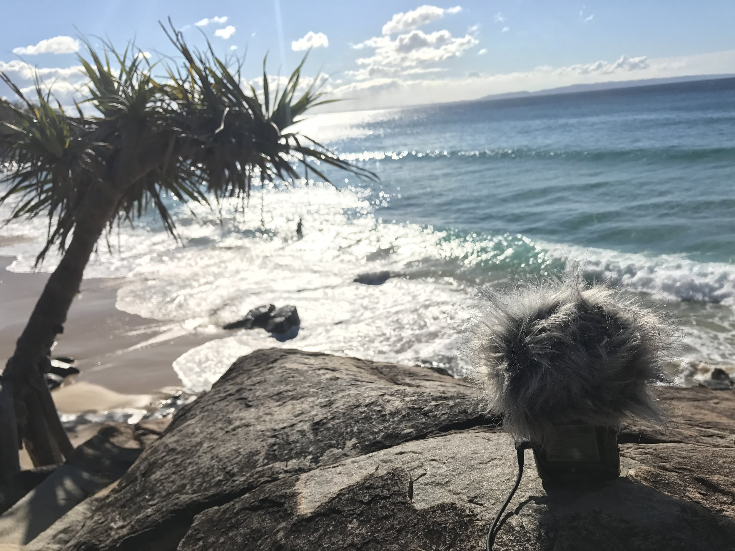 Quick wave atmos recording in Noosa with Zoom H2n in it's Ambisonic mode