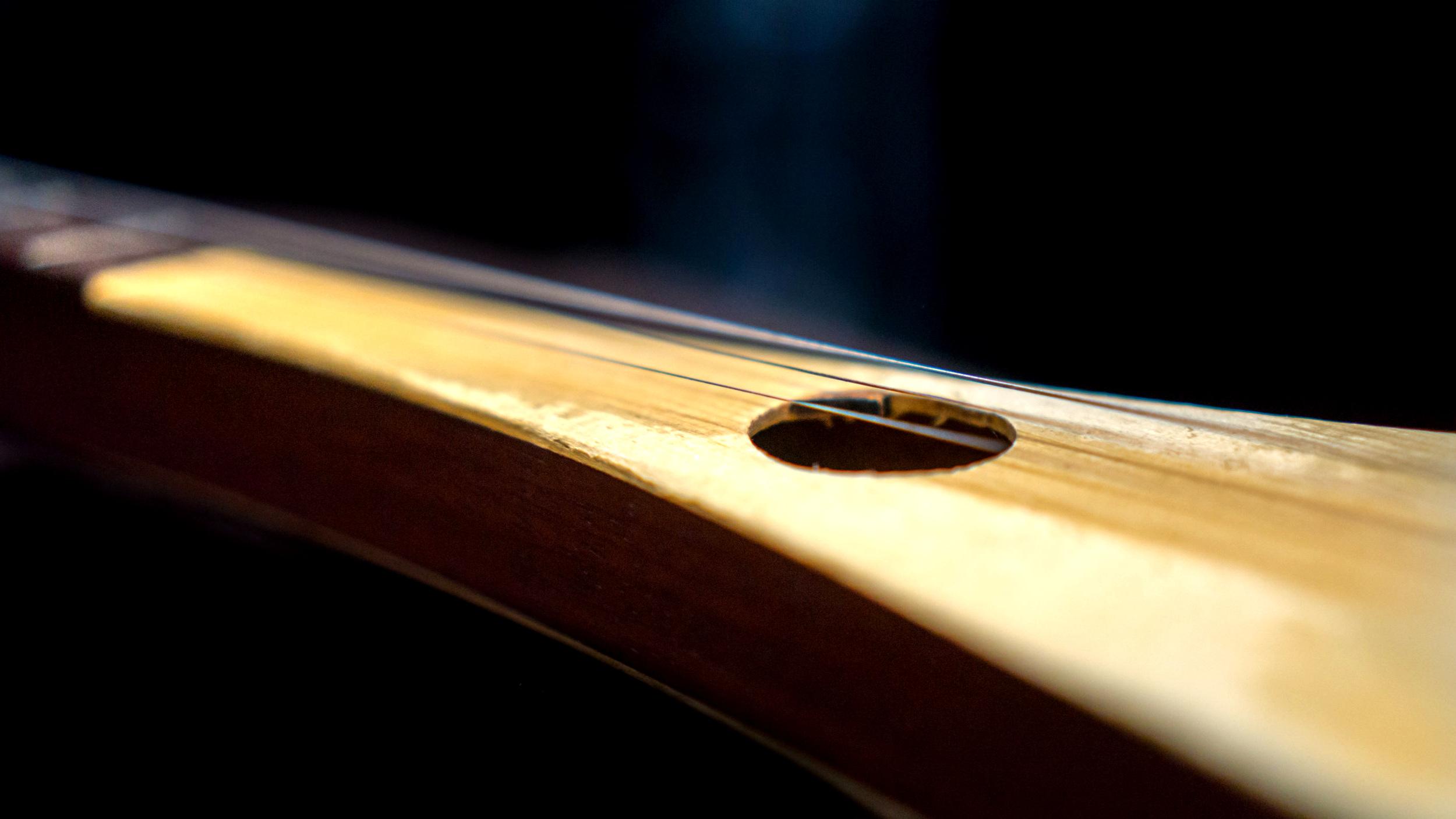 Strumstick - Kontakt Instrument PMvst002