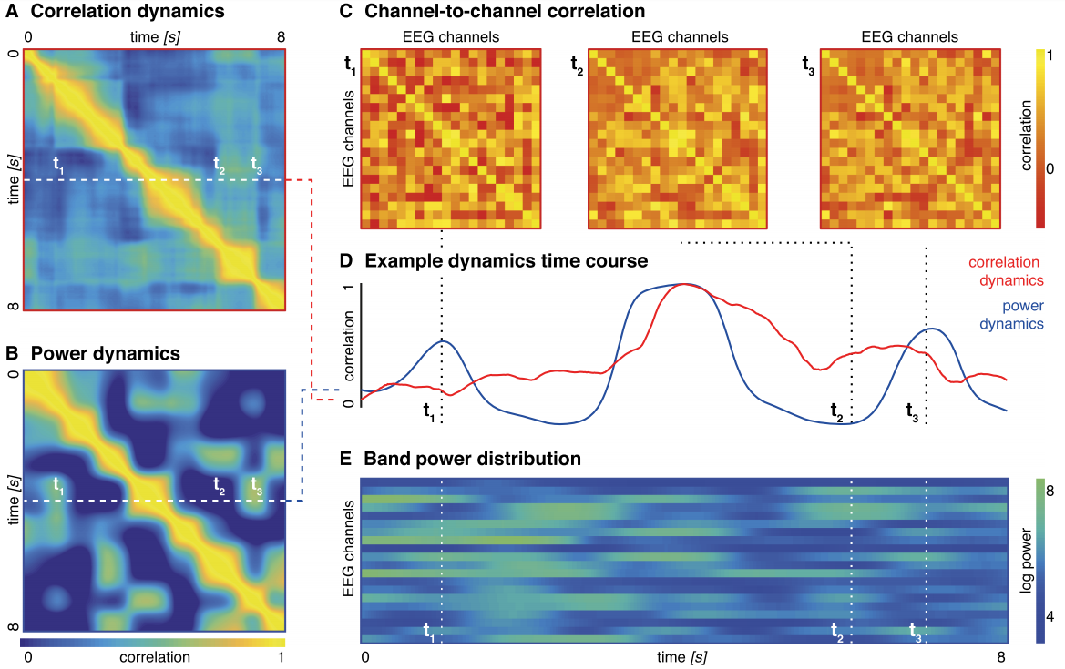 Network dynamics in epileptic encephalopathies [paper] - In this paper we illustrate how summary measures of network dynamics can separate subgroups of epilepsies in early infancy. Rosch et al (2017) Net Neurosci: 10.1162/netn_a_00026
