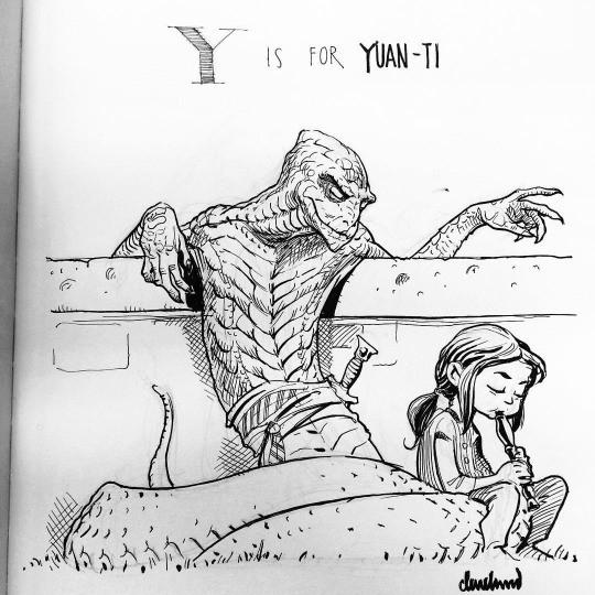 Y.jpeg