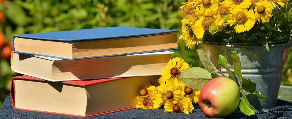 Source:https://pixabay.com/en/books-read-garden-sun-brews-apple-1757734/