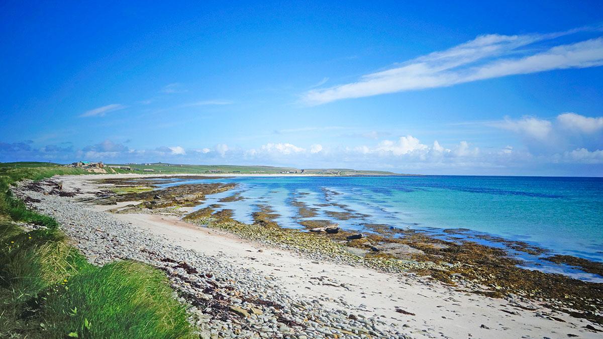 WIN a birding break on beautiful Orkney