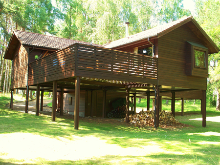 Treehouse new.jpg