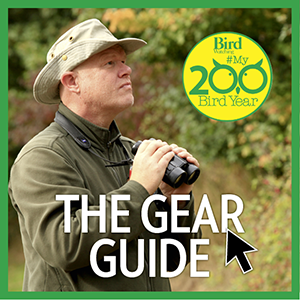 The gear guide NEW.png