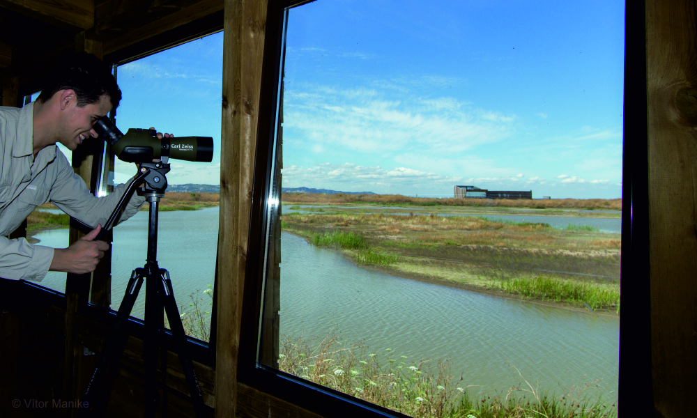 Lisboa-VFX-EVOA-Outdoor-observatorio-birdwatching.jpg