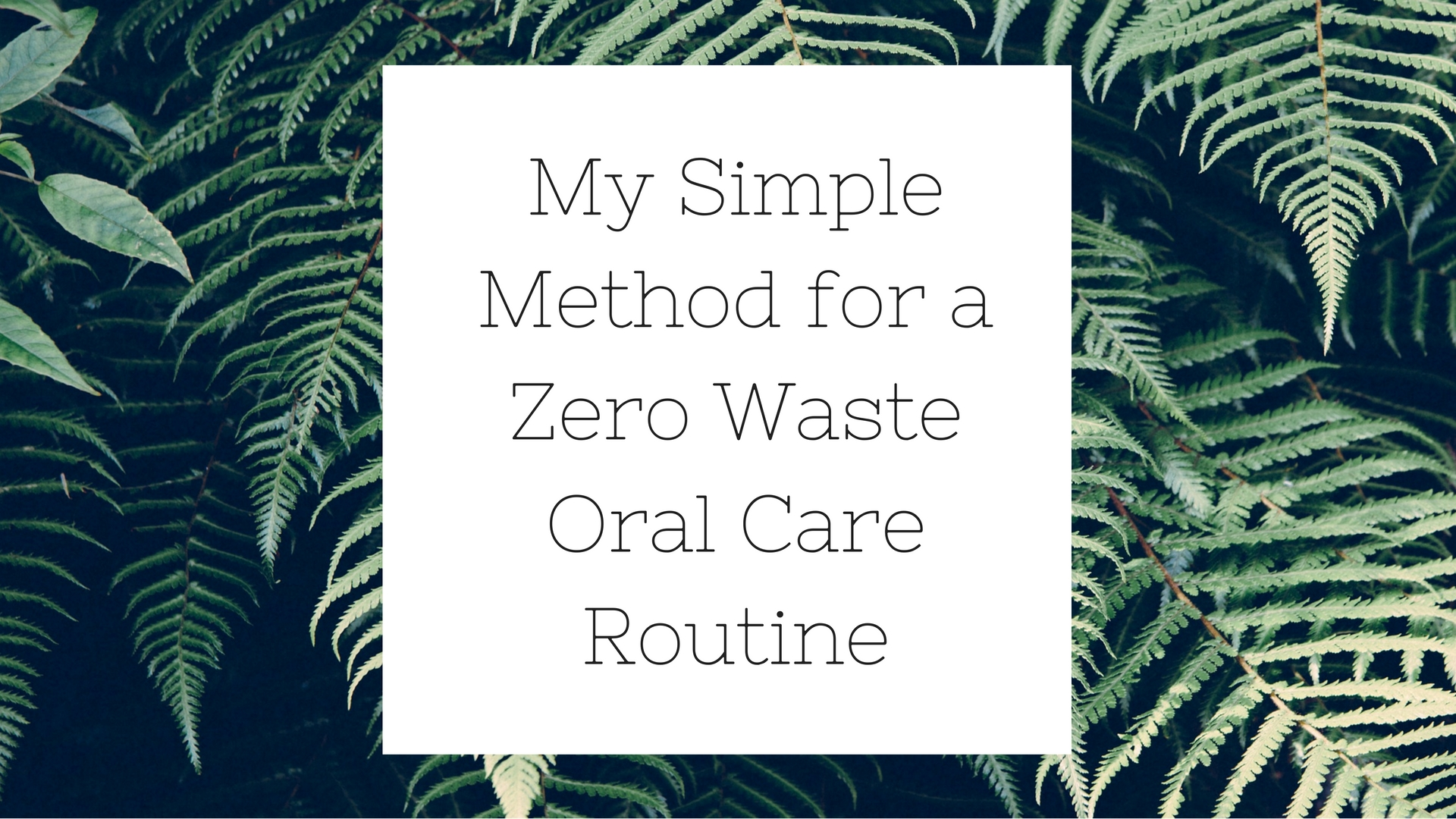 My Simple Method for a Zero Waste Oral Care Routine