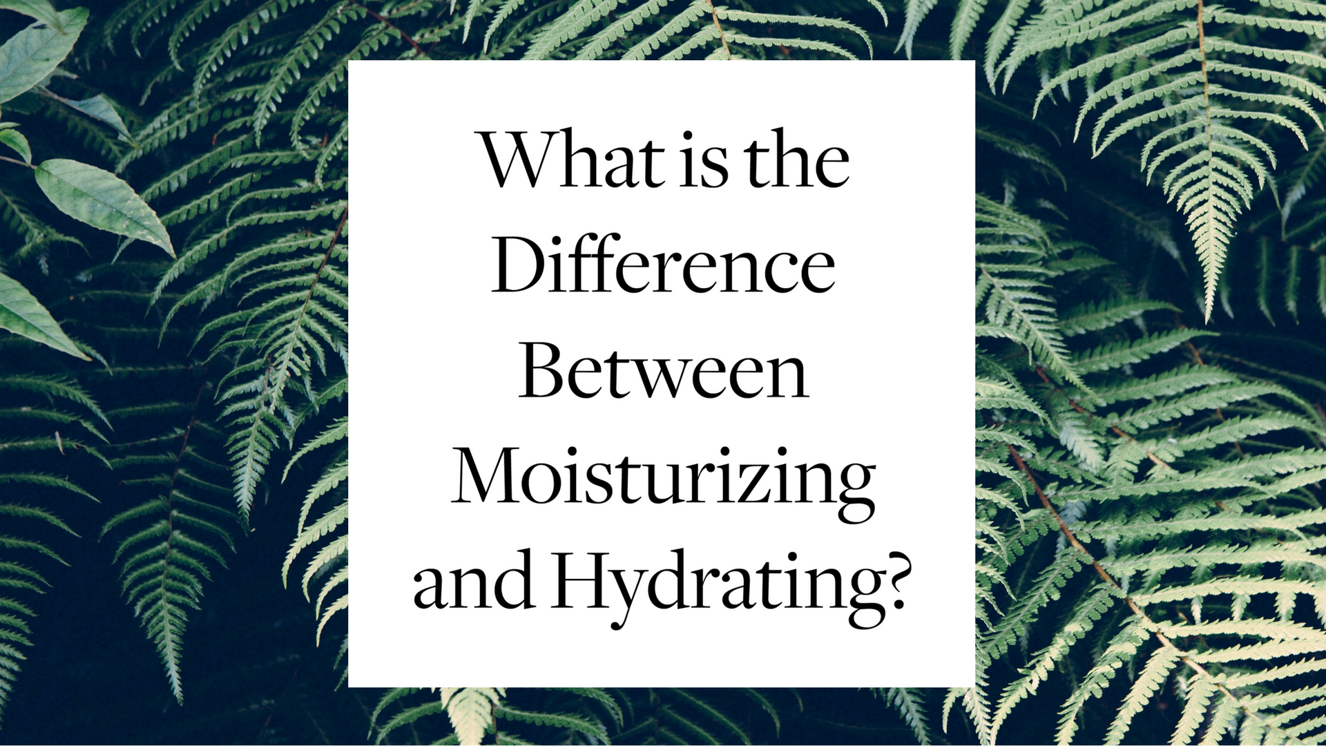 What is the Difference Between Moisturizing and Hydrating