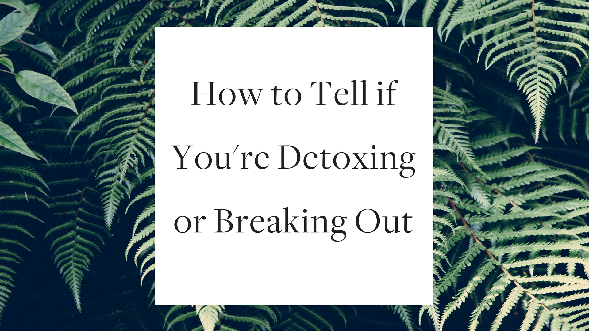 How to Tell if You're Detoxing or Breaking Out