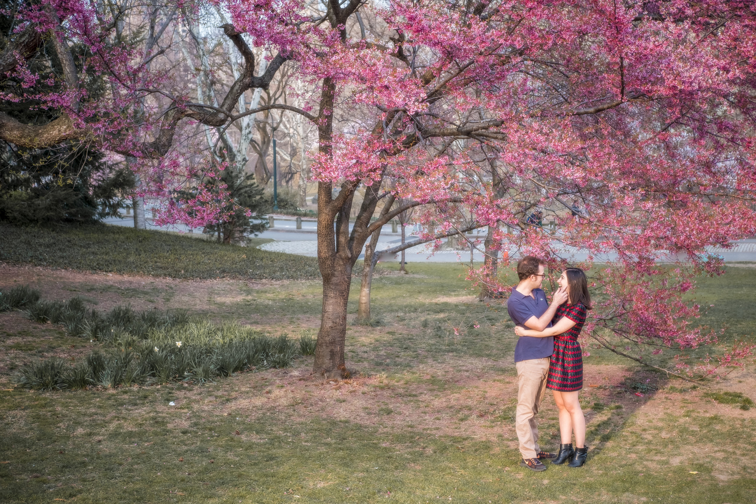 Central Park Engagement Photos 3.jpg