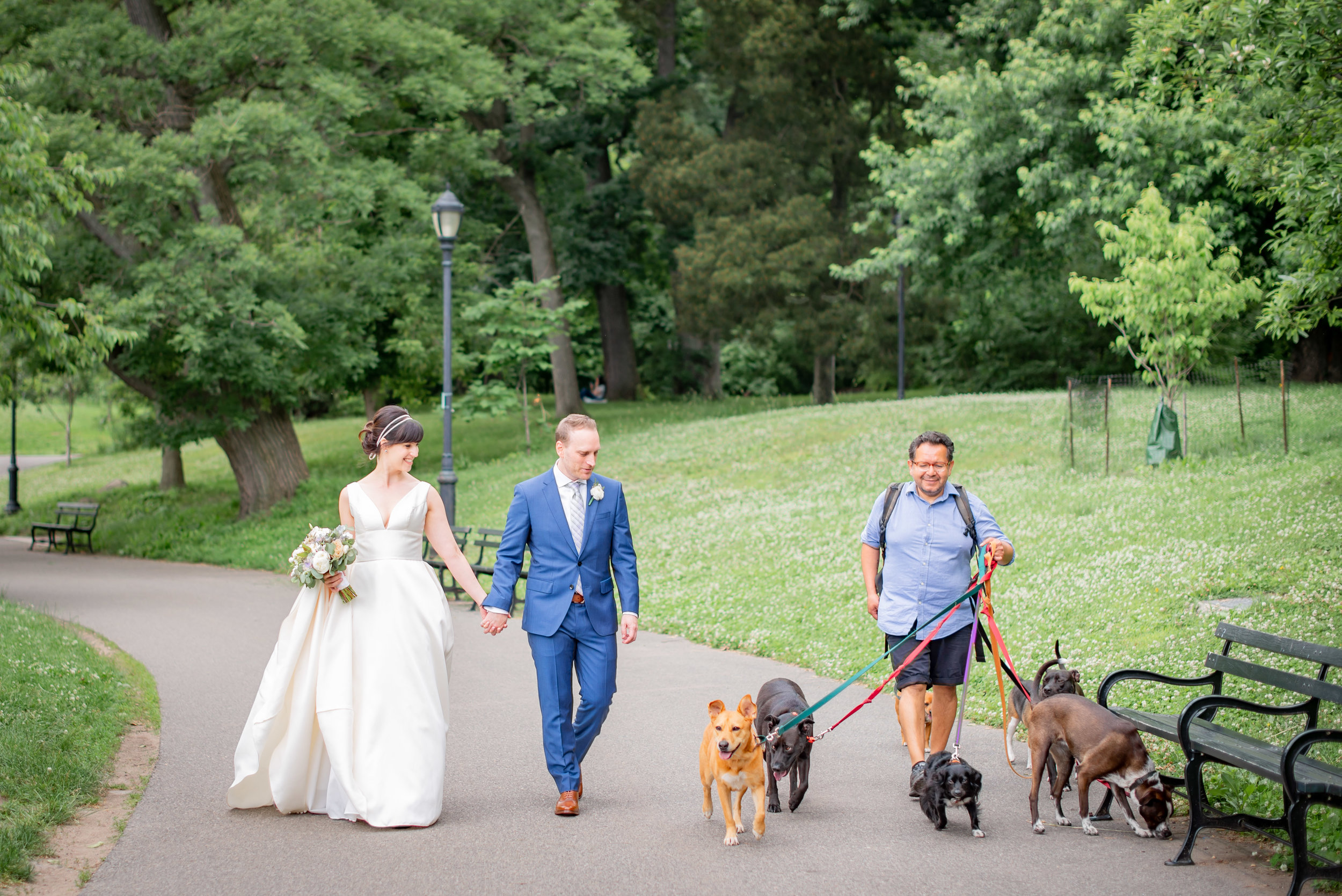 Prospect Park Wedding Portrait with Dog Walker.jpg
