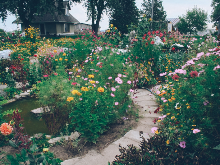 ourgardens-5.jpg