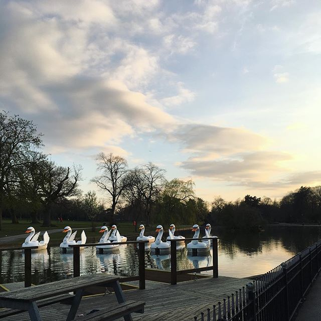 Lakeside nights vs. urban delights to get us over hump day 🐫 🌅 🎨 #birmingham #brumisbrill #visitbirmingham #brum #realbirmingham