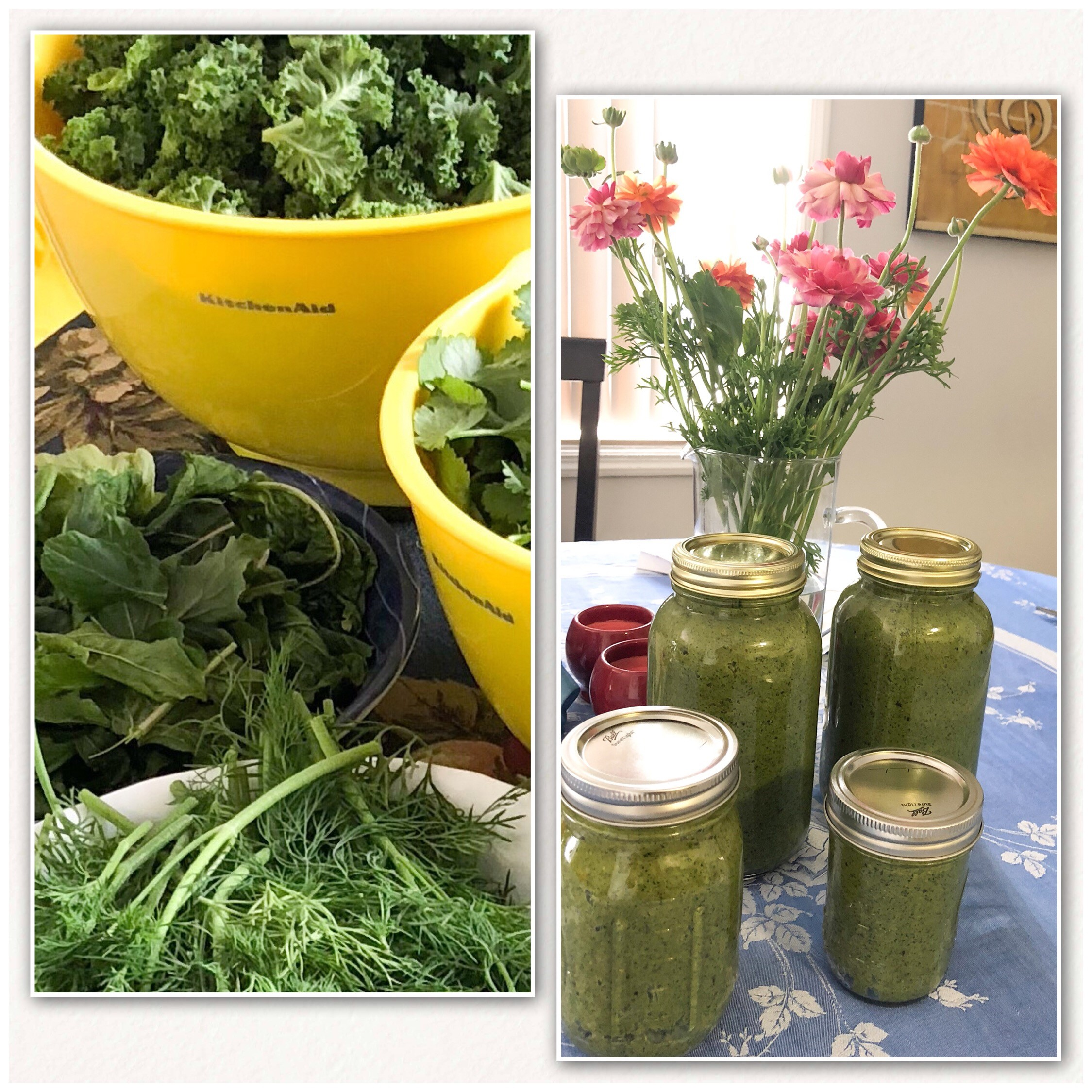 Dairy Free Pesto   INGREDIENTS 4 c Greens (mixed) ¾ c Raw Cashews ¼ c Olive Oil, plus more to desired consistency  ¼ c Nutritional Yeast ½ tsp Garlic Infused Sea Salt, plus more to taste ½ tsp Pepper 1 tbsp Lemon Juice Optional: 1 tsp Red Pepper Flakes  Optional: 1 tsp Hemp Hearts  INSTRUCTIONS Add all ingredients to food processor or high powered blender.  Pulse until mixed. Stop and scrape sides as needed.  Perfect for adding to sauces, dressing, breads, sandwiches, pastas, etc. Enjoy!